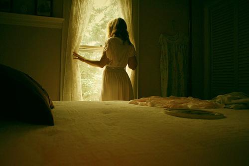 bed-of-dreams-window