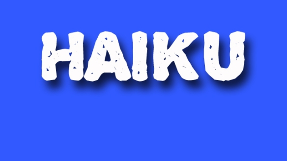 haiku poetry - jixi fox - free verse spoken word nyc poem - blue