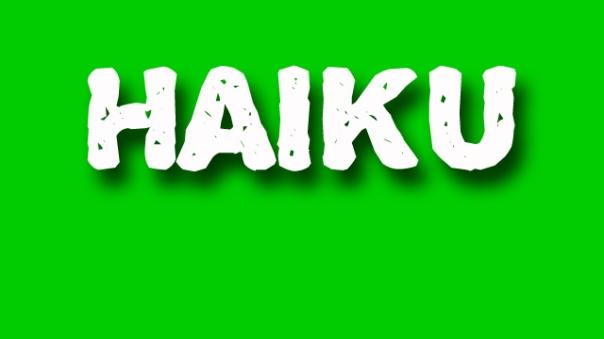 haiku poetry - jixi fox - free verse spoken word nyc poem - green
