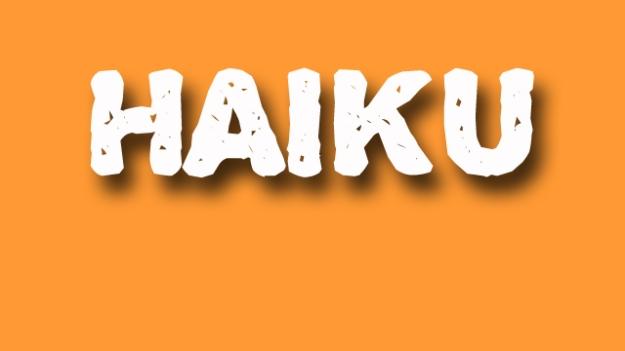 haiku poetry - jixi fox - free verse spoken word nyc poem - orange