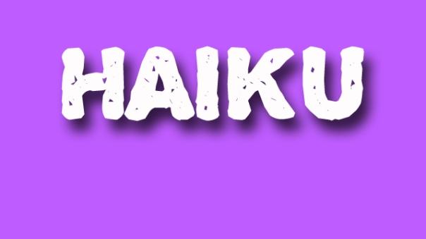haiku poetry - jixi fox - free verse spoken word nyc poem - purple
