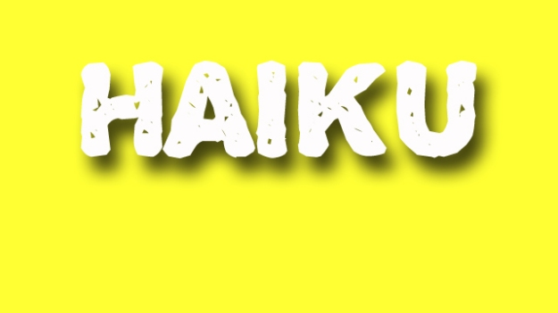 haiku poetry - jixi fox - free verse spoken word nyc poem - yellow