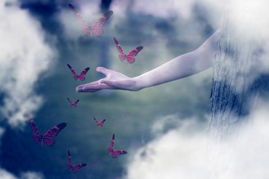 in_dreams_by_sweet_reality_xo