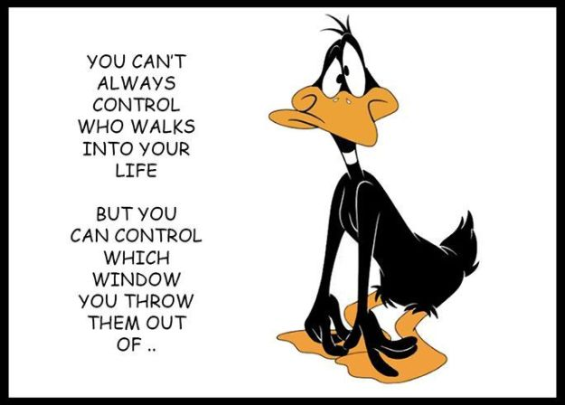 daffy duck quote