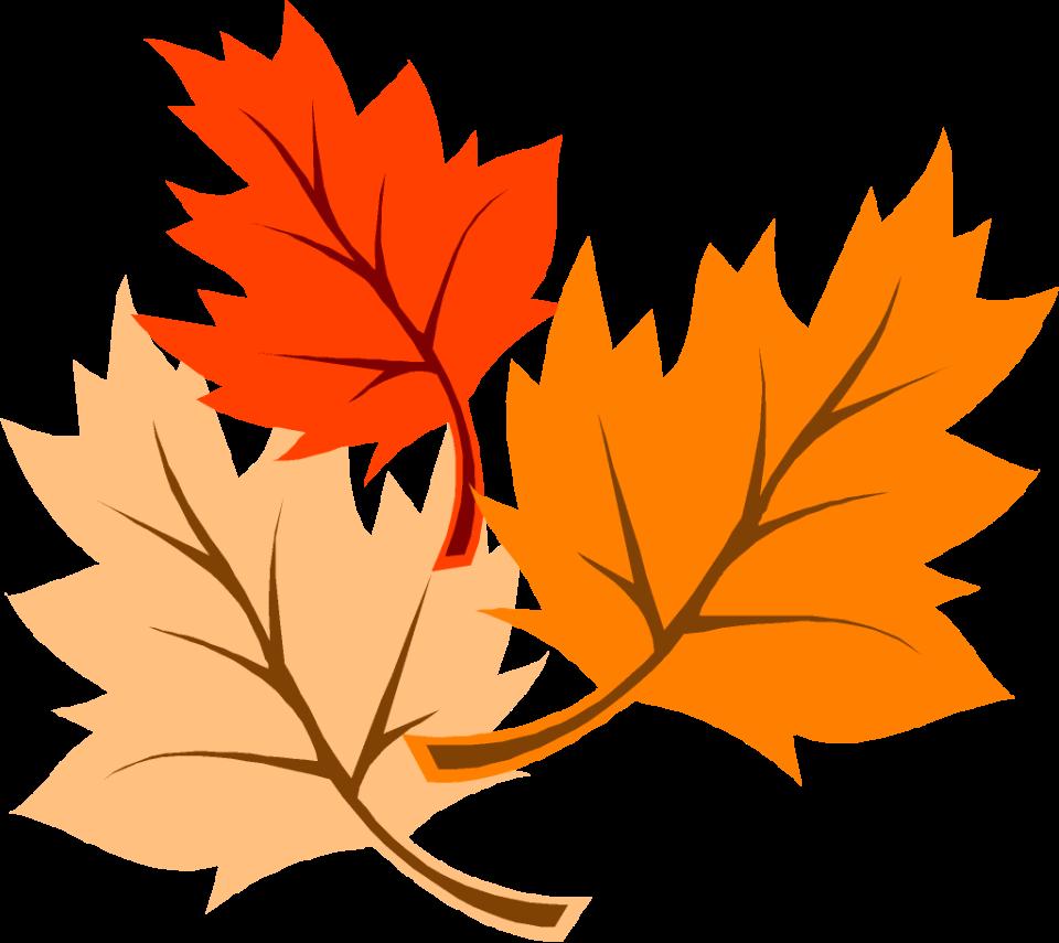fall leaves autumn 4